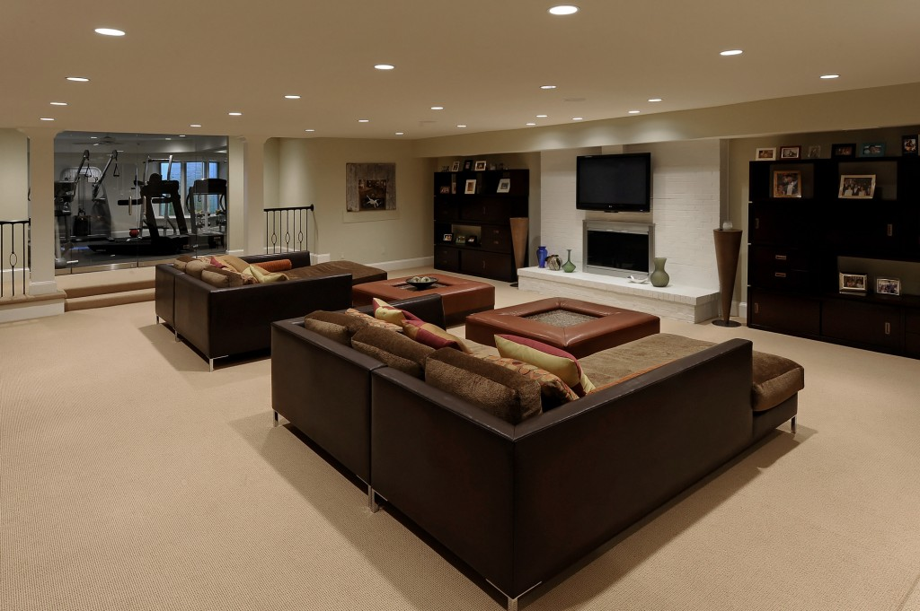 BAL-Potomac-MD-Purchase-Consultation-Contemporary-Basement