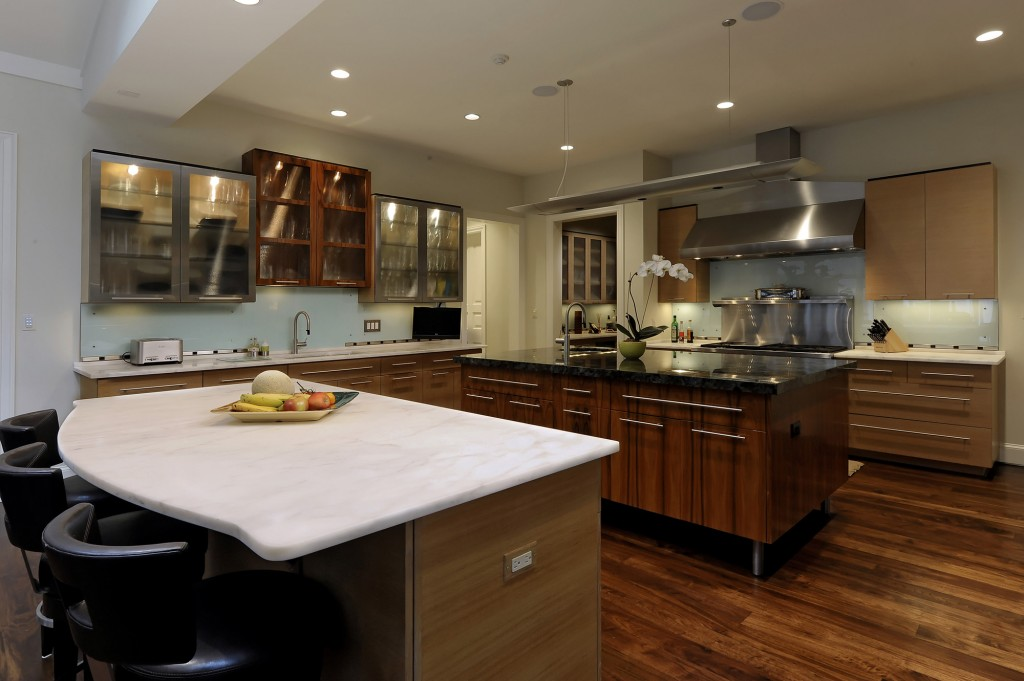 BAL-Potomac-MD-Purchase-Consultation-Contemporary-Kitchen-Renovation