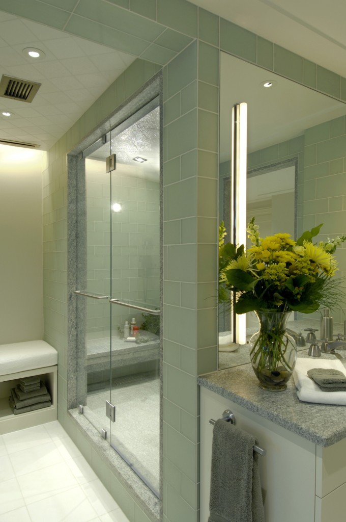 LER-Washington-DC-Condo-Renovation-Master-Bath-Shower