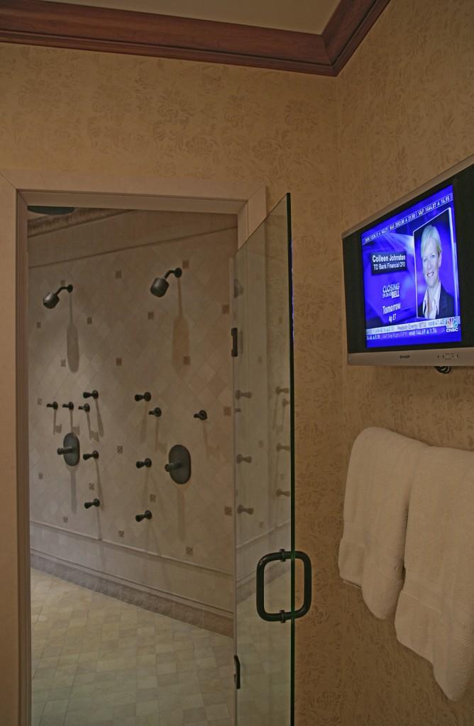 HEN-Great-Falls-VA-traditional-master-bath-shower2