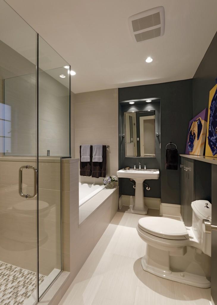 Washington DC Whole Condo Renovation Bathroom