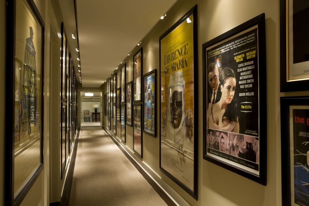 HAN_HAN-Great-Falls-VA-Media-Room-Art-Display-a