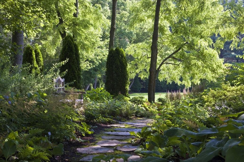 HAN_HAN-Great-Falls-VA-landscaping-a