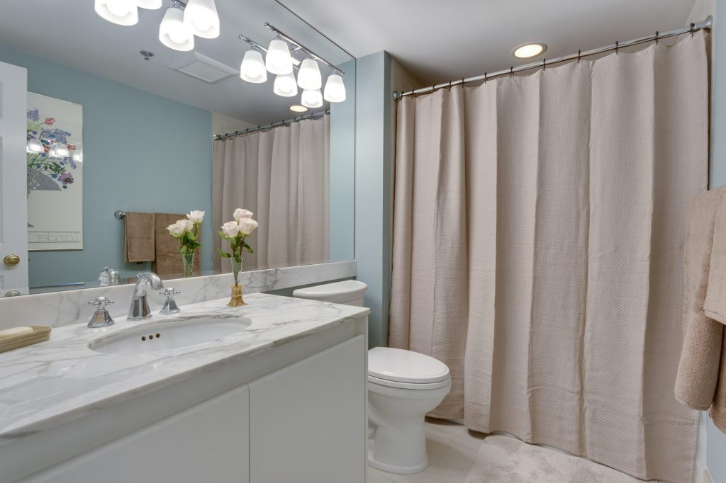 Chevy Chase MD Condominium Renovation