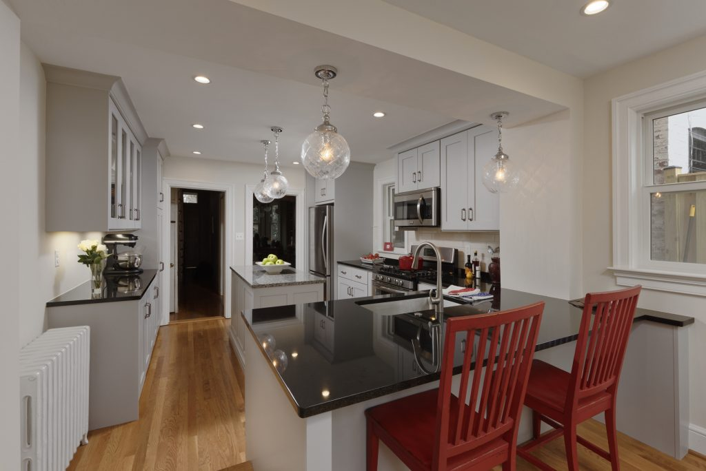 Design Build Capitol Hill Renovation - Kitchen and Outdoor
