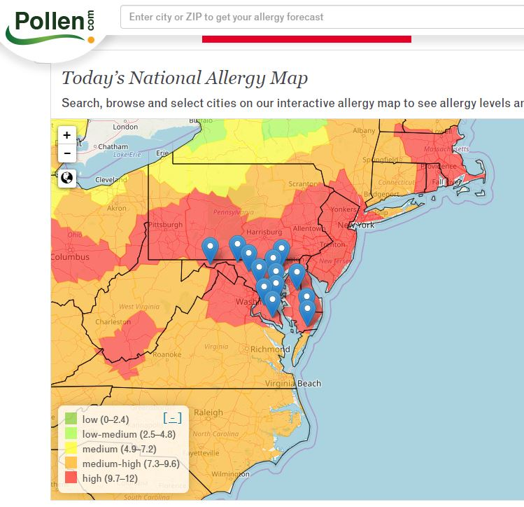Tips for Managing Pollen Season - Apps