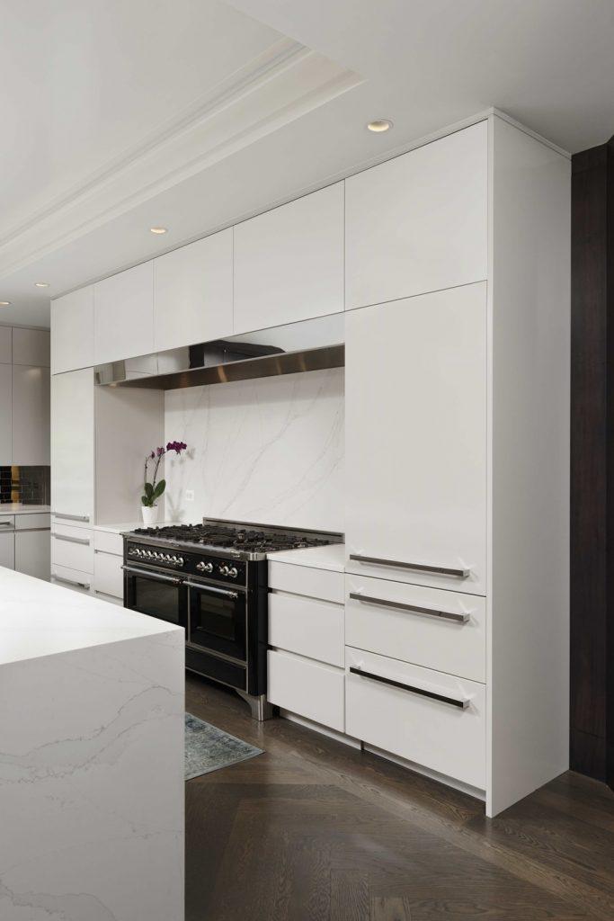 Modern Contemporary Kitchen Renovation